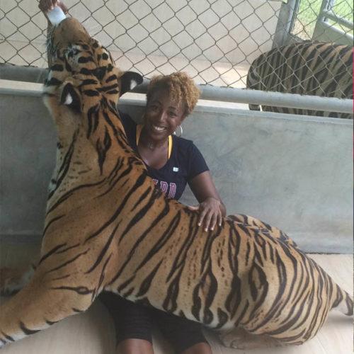 DiscovHer - Tiger Park, Bangkok, Thailand