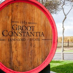 South-Africa-Groot-Constantia-winery-cask-2